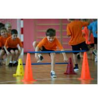 Подвижные игры, соревнования
